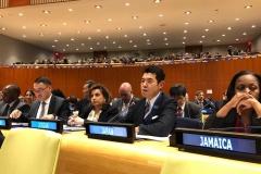 NPT運用検討会議第3回準備委員会
